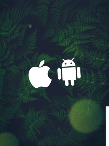 hvad er en app